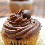 Muffin or cupcake??? You decide. These Gluten Free Chocolate Chip Carrot Cake Cupcakes are delicious on their own or topped with chocolate cream cheese frosting for a sweet dessert.